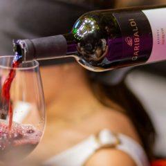 Wine Class: Iniciando no mundo dos vinhos
