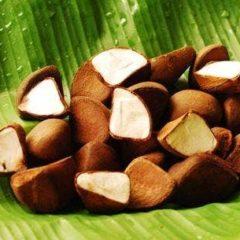 Inatú é a nova marca de produtos florestais amazônicos