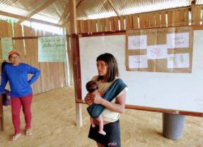 Mulheres Yanomami discutem práticas e saberes tradicionais no acompanhamento da gestação, parto e pós-parto